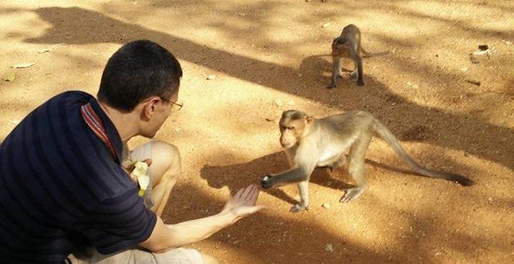Madurai monkey with olaf